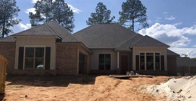 139 Hollow Haven St, Fairhope, AL 36532 (MLS #299761) :: Mobile Bay Realty
