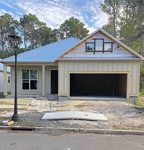 464 Orleans St, Gulf Shores, AL 36542 (MLS #270167) :: Jason Will Real Estate