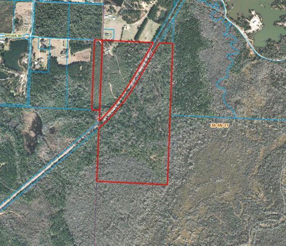 0 Brown Road, Mcdavid, FL 32568 (MLS #229409) :: Gulf Coast Experts Real Estate Team
