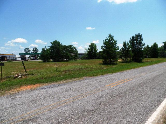 87 WE Highway 84, Monroeville, AL 36460 (MLS #242998) :: Elite Real Estate Solutions
