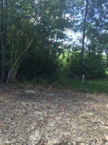 Lot20 Turnberry Circle, Loxley, AL 36551 (MLS #243540) :: Ashurst & Niemeyer Real Estate