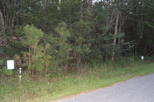 13948 Gladiola Lane, Magnolia Springs, AL 36555 (MLS #243949) :: Gulf Coast Experts Real Estate Team