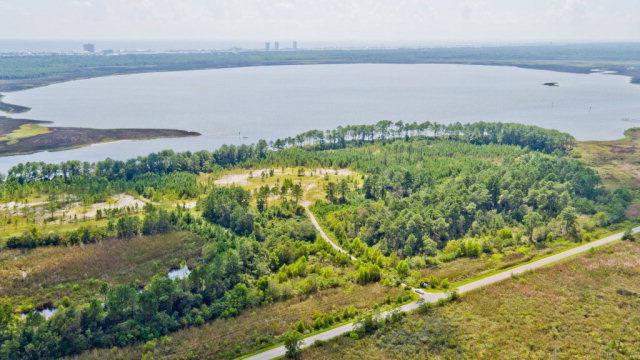 0 WE County Road 4, Gulf Shores, AL 36542 (MLS #244682) :: Elite Real Estate Solutions
