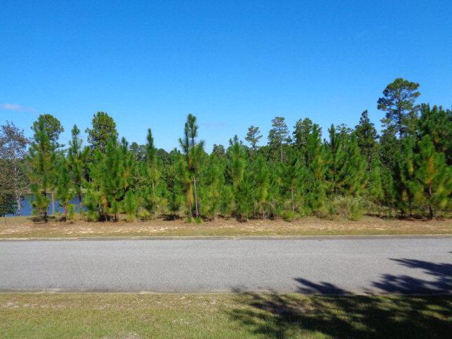 0 Juniper Creek Dr, Brewton, AL 36426 (MLS #245213) :: The Kim and Brian Team at RE/MAX Paradise