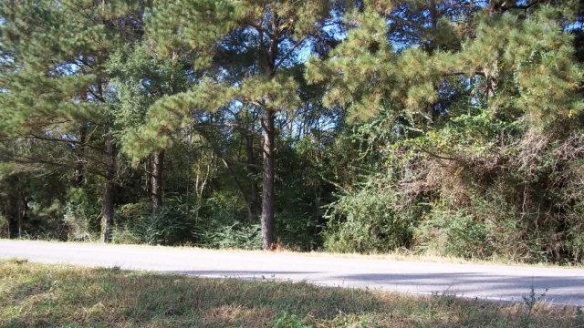 0 County Road 87, Elberta, AL 36530 (MLS #245484) :: Gulf Coast Experts Real Estate Team