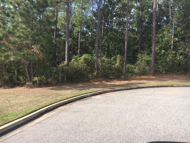 0 Oakachoy Lp, Daphne, AL 36526 (MLS #245853) :: Gulf Coast Experts Real Estate Team