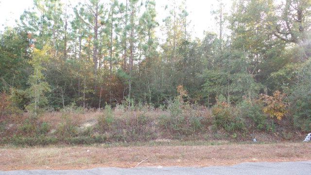 1 Dobson Road, Jay, FL 32565 (MLS #247058) :: Gulf Coast Experts Real Estate Team