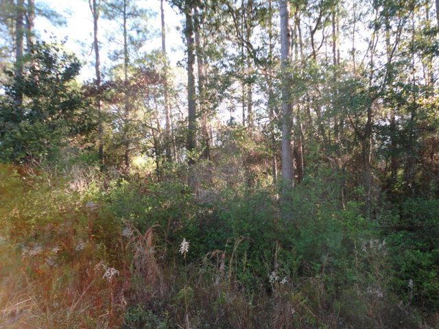 0 Scenic Highway 98, Fairhope, AL 36532 (MLS #248162) :: Ashurst & Niemeyer Real Estate