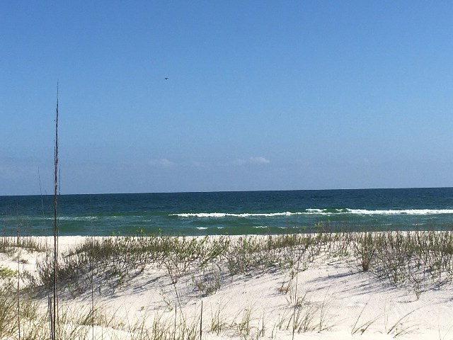 16000 Perdido Key Dr, Perdido Key, FL 32507 (MLS #252217) :: Gulf Coast Experts Real Estate Team
