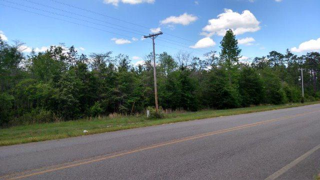 0 County Road 68, Loxley, AL 36551 (MLS #252734) :: Elite Real Estate Solutions