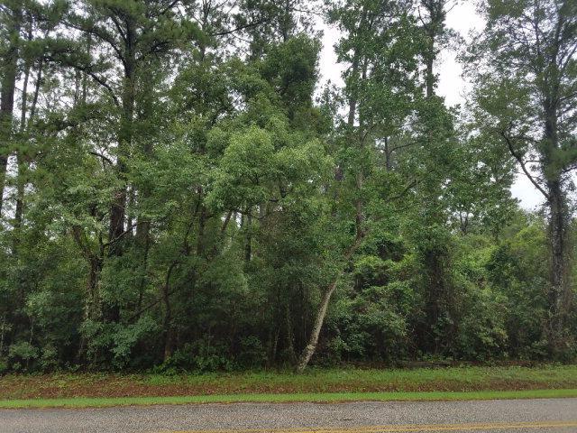 1312 Johnson Road, Daphne, AL 36526 (MLS #255169) :: Gulf Coast Experts Real Estate Team