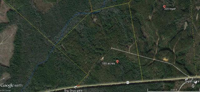 0 Highway 31, Bay Minette, AL 36507 (MLS #257051) :: Coldwell Banker Seaside Realty