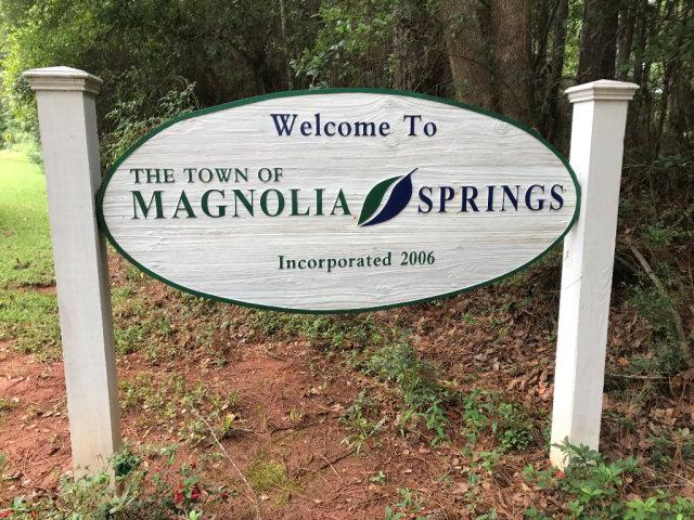 14251 Us Highway 98, Magnolia Springs, AL 36555 (MLS #257286) :: Jason Will Real Estate