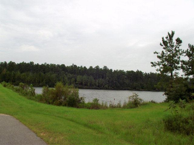 0 Lake Juniper Rd, Brewton, AL 36426 (MLS #257850) :: Gulf Coast Experts Real Estate Team