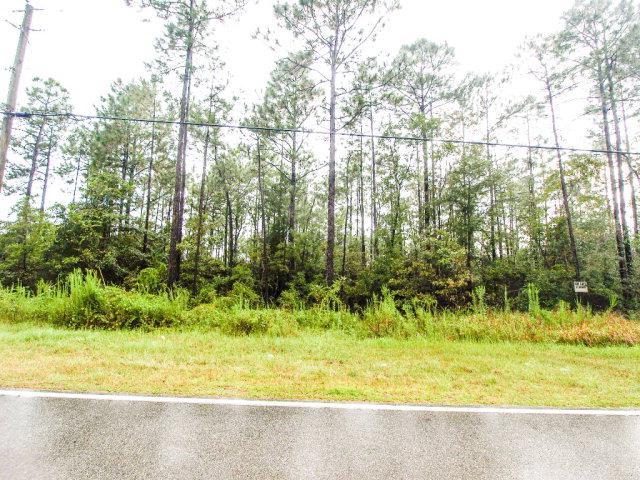 0 John Shinn Road, Mobile, AL 36521 (MLS #258065) :: Gulf Coast Experts Real Estate Team