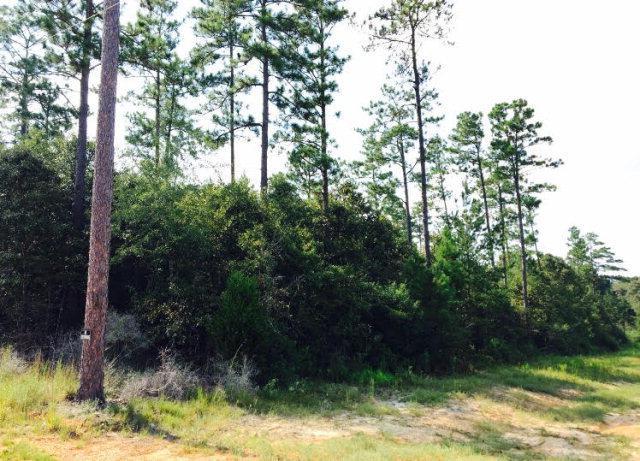 0 County Road 7, Range, AL 36473 (MLS #258069) :: Gulf Coast Experts Real Estate Team