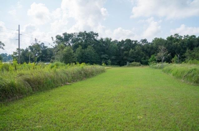 19450 Keller Rd, Foley, AL 36535 (MLS #260517) :: Jason Will Real Estate