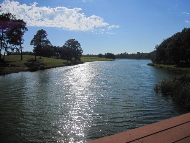 0 Highway 98, Magnolia Springs, AL 36555 (MLS #261472) :: Jason Will Real Estate