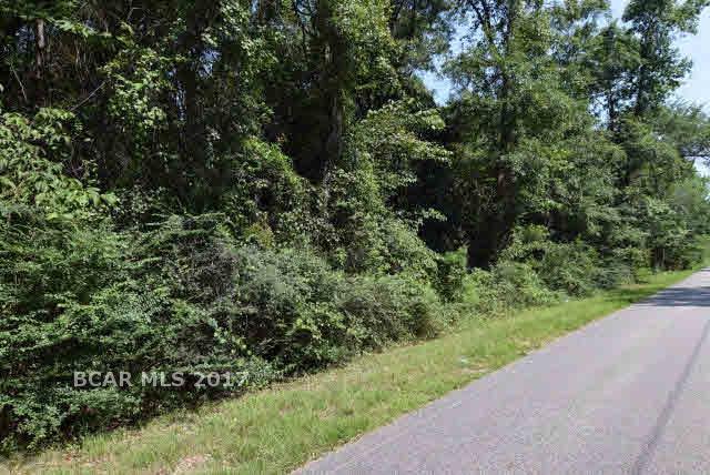 0 Fish River Road, Magnolia Springs, AL 36555 (MLS #262864) :: Jason Will Real Estate