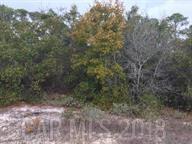 0 River Road, Orange Beach, AL 36561 (MLS #264317) :: Elite Real Estate Solutions