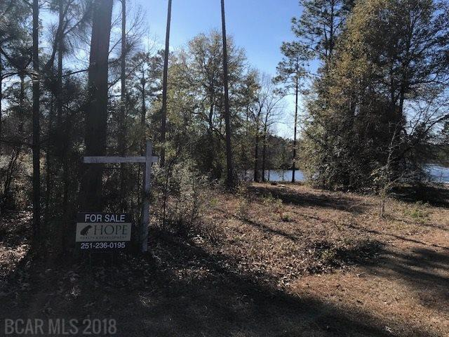 Lot #29 Lake Juniper Rd, Brewton, AL 36426 (MLS #264751) :: Gulf Coast Experts Real Estate Team