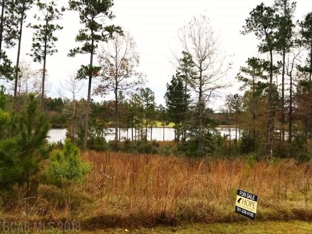 Lot #11 Lake Juniper Rd, Brewton, AL 36426 (MLS #264753) :: Gulf Coast Experts Real Estate Team