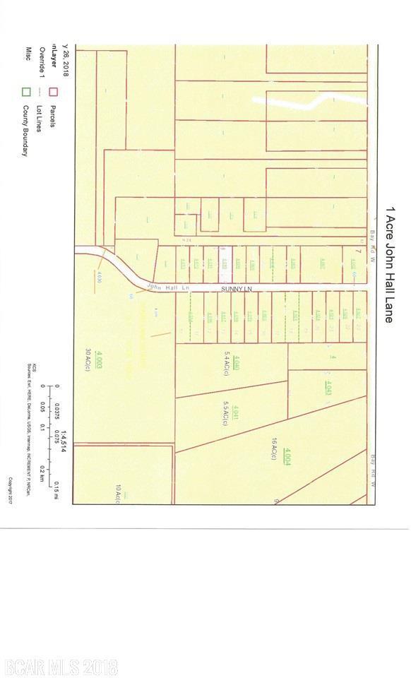 9801 John Hall Ln, Foley, AL 36535 (MLS #264957) :: Gulf Coast Experts Real Estate Team