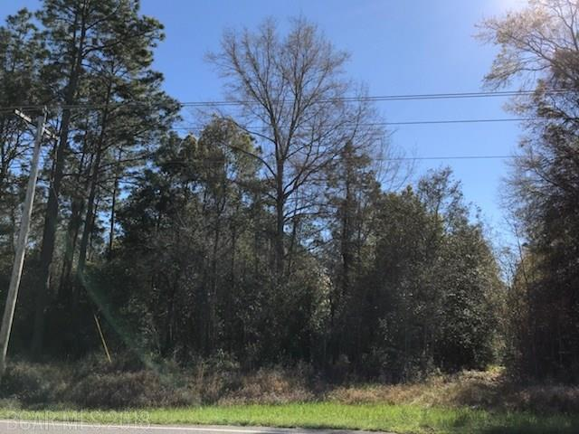County Road 87, Robertsdale, AL 36567 (MLS #267325) :: Elite Real Estate Solutions