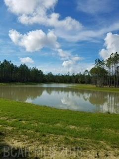 0 Burkowski Lane, Gulf Shores, AL 36542 (MLS #268676) :: Karen Rose Real Estate