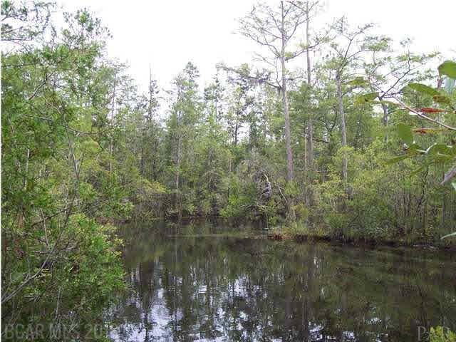 00 Juniper Rd, Seminole, AL 36574 (MLS #272066) :: Gulf Coast Experts Real Estate Team