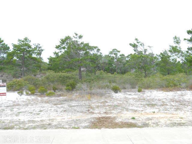 0 River Road, Orange Beach, AL 36561 (MLS #272360) :: Jason Will Real Estate