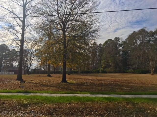 0 Old Castleberry Road, Brewton, AL 36426 (MLS #272833) :: Elite Real Estate Solutions