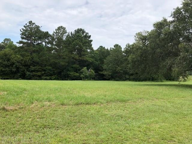 0 Balsam Creek Drive, Elberta, AL 36530 (MLS #273470) :: Gulf Coast Experts Real Estate Team