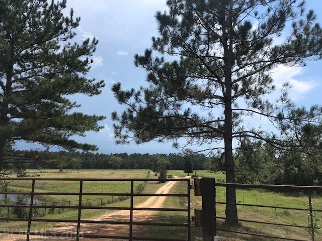 1080 Old Highway 31, Brewton, AL 36426 (MLS #274593) :: Elite Real Estate Solutions