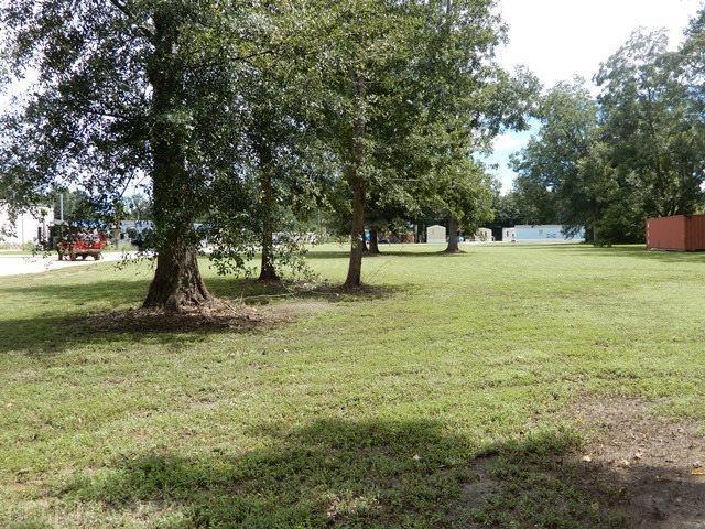 600 Block N Main Street, Atmore, AL 36502 (MLS #274957) :: Jason Will Real Estate