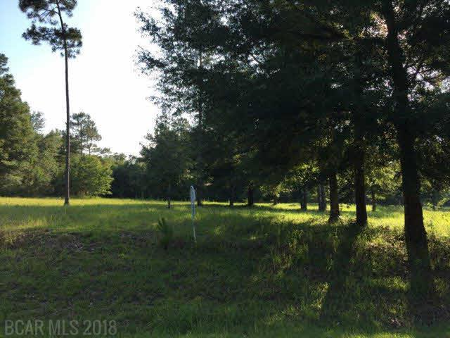 0 Pandion Drive, Magnolia Springs, AL 36555 (MLS #277284) :: Alabama Coastal Living