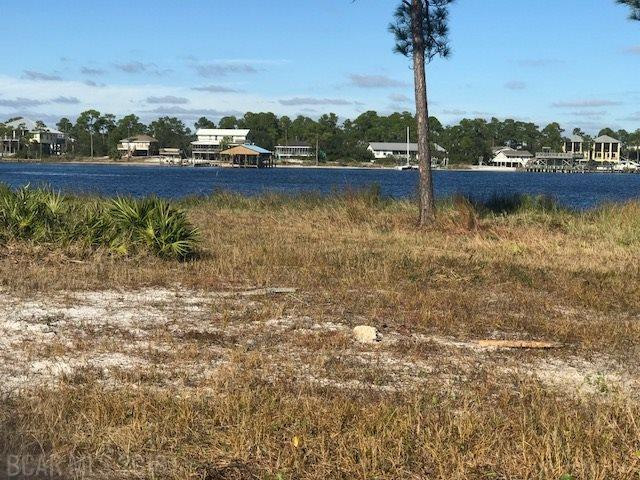3 Cotton Bayou Ln, Orange Beach, AL 36561 (MLS #277545) :: Ashurst & Niemeyer Real Estate