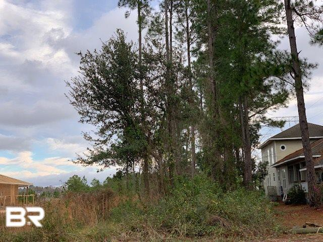 316 W Canal Drive, Gulf Shores, AL 36542 (MLS #278025) :: Ashurst & Niemeyer Real Estate