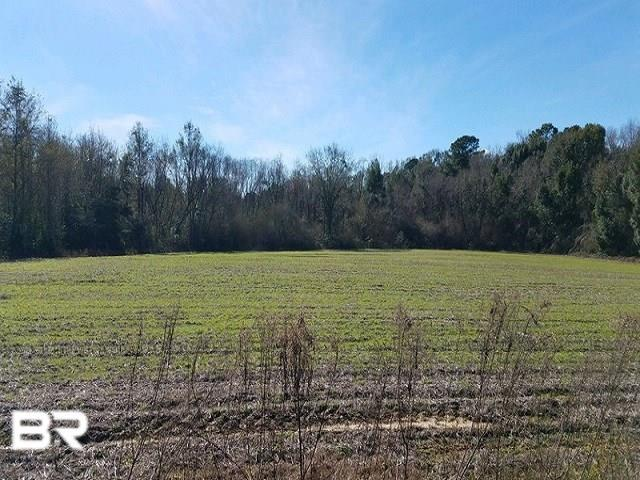 0 County Road 64, Loxley, AL 36551 (MLS #278060) :: Elite Real Estate Solutions