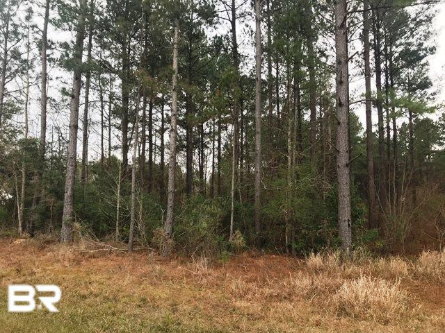 61180 Milstead Road, Atmore, AL 36502 (MLS #278581) :: Gulf Coast Experts Real Estate Team