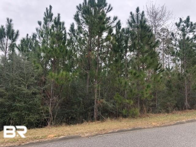 0 Wildflower Trail, Spanish Fort, AL 36527 (MLS #279181) :: Elite Real Estate Solutions