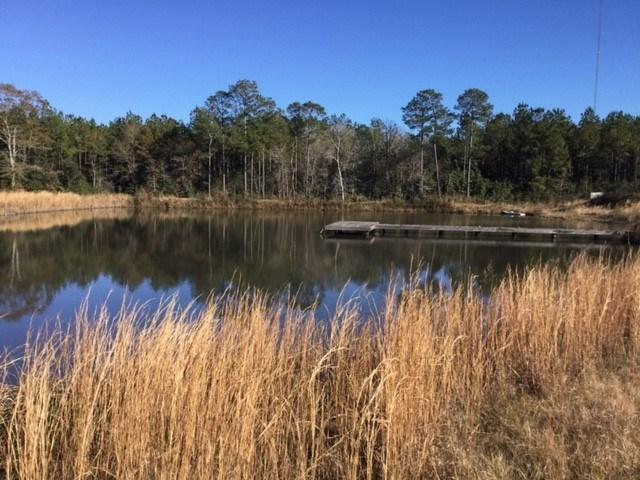24729 County Road 87, Robertsdale, AL 36567 (MLS #279777) :: The Dodson Team