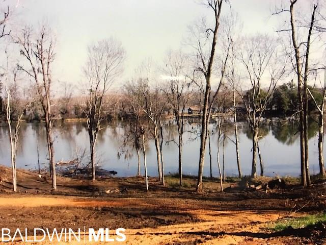 16 River View Landing Drive, Camden, AL 36726 (MLS #279871) :: Elite Real Estate Solutions