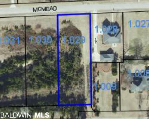 0 Mcmead Drive, Brewton, AL 36426 (MLS #280659) :: Elite Real Estate Solutions