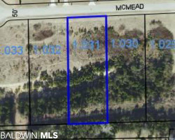 0 Mcmead Drive, Brewton, AL 36426 (MLS #280676) :: Jason Will Real Estate