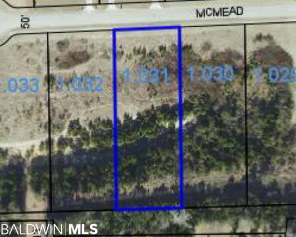 0 Mcmead Drive, Brewton, AL 36426 (MLS #280676) :: Elite Real Estate Solutions