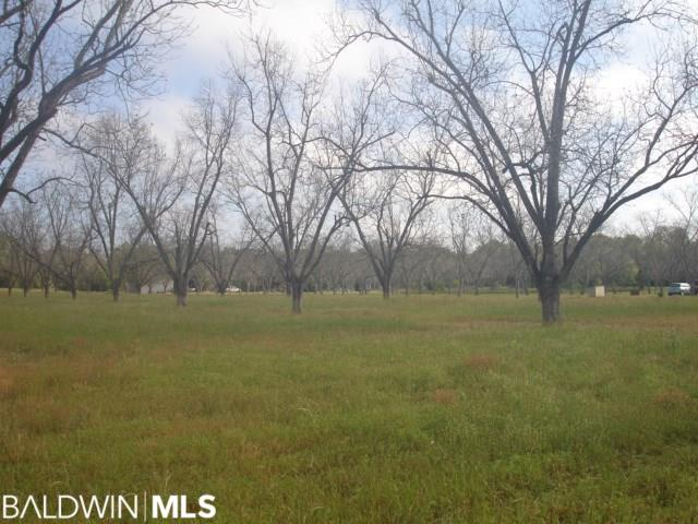 9130 County Road 11 - Photo 1