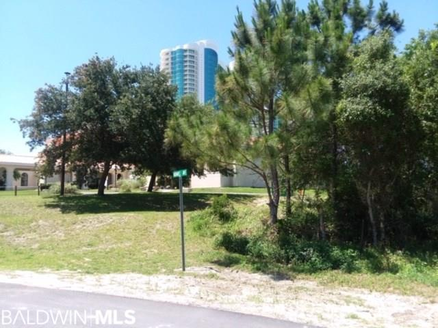 0 S Adams Avenue, Orange Beach, AL 36561 (MLS #283882) :: Gulf Coast Experts Real Estate Team