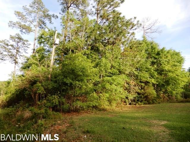 8000 Blk Jakes Road, Walnut Hill, FL 32568 (MLS #284342) :: The Kim and Brian Team at RE/MAX Paradise