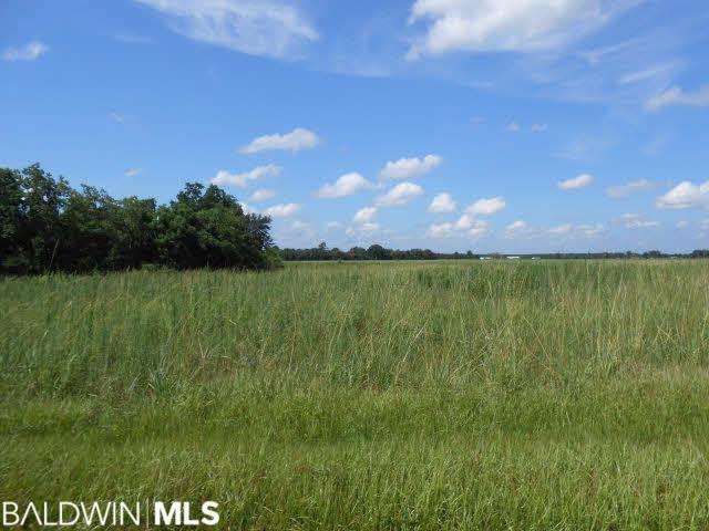 00 Jack Springs Rd, Atmore, AL 36502 (MLS #286939) :: Jason Will Real Estate